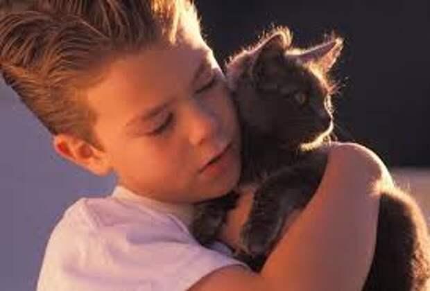 Мальчик привез в нашу клинку кошку, она была в тяжелом состоянии и я его ругала