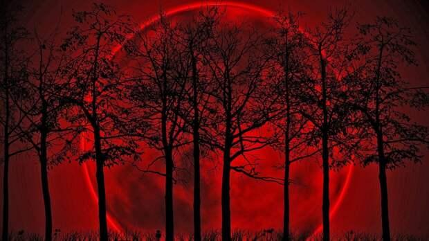 Раввины заявили, что после Кровавой Луны на земле начнутся войны