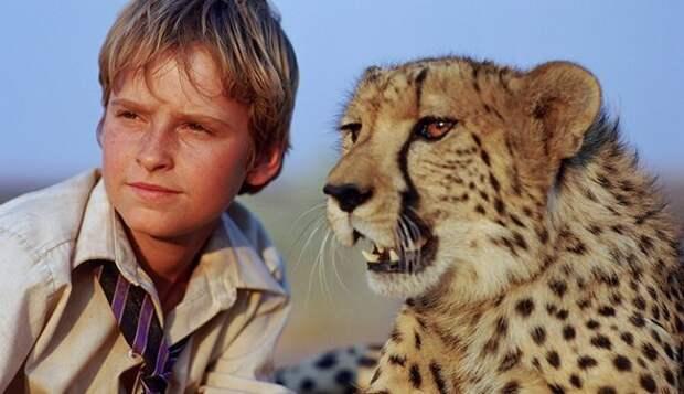 10 трогательных фильмов о дружбе с животными