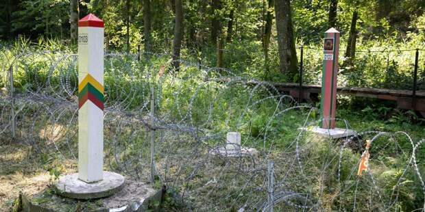У Литвы закончилась колючая проволока для строительства забора на границе с Белоруссией