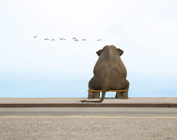 Уметь подождать — главный секрет счастья