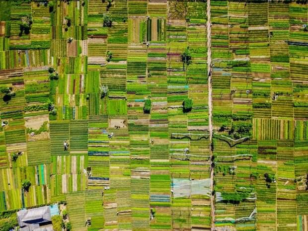 Разные объекты, которые потрясающе выглядят через иллюминатор самолёта