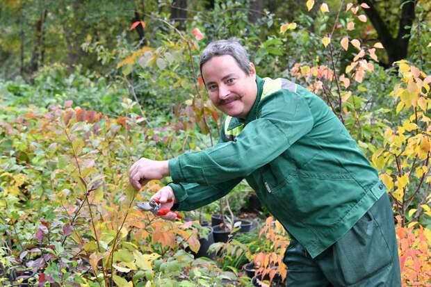 Агроном Ботанического сада дал советы по подготовке сада и огорода к зиме