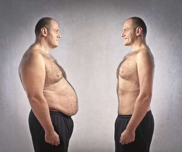 9 фактов про жир на нашем теле