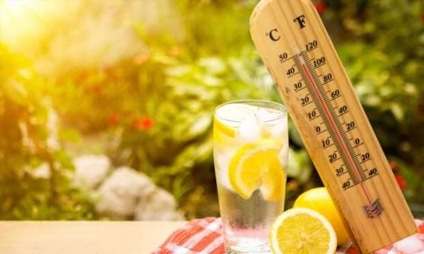 Основные правила питания в жаркую погоду
