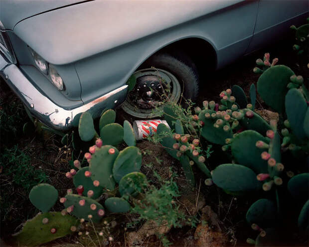 Самая одинокая поездка: путешествие по пустой Америке на снимках Арно Монтэгарда