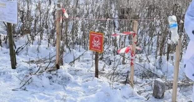 В Донбассе двое украинских военных подорвались на неизвестном взрывном устройстве