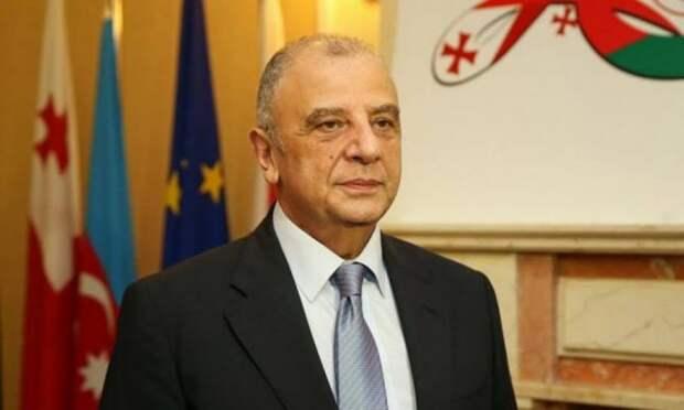 Грузия постарается сохранить партнерство сУкраиной— отозванный посол