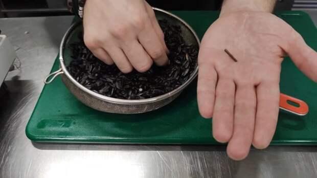 Витаминная микрозелень из семечек — готова уже через неделю