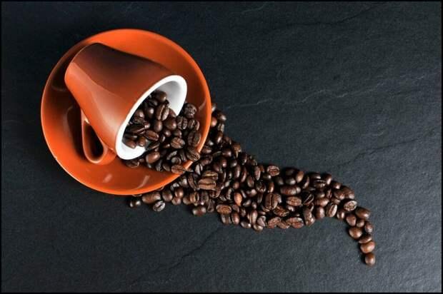 Почему кофеманам нужно иногда делать перерывы с любимым напитком