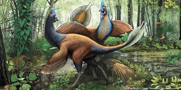 В Китае нашли останки динозавра, сидящего на кладке яиц