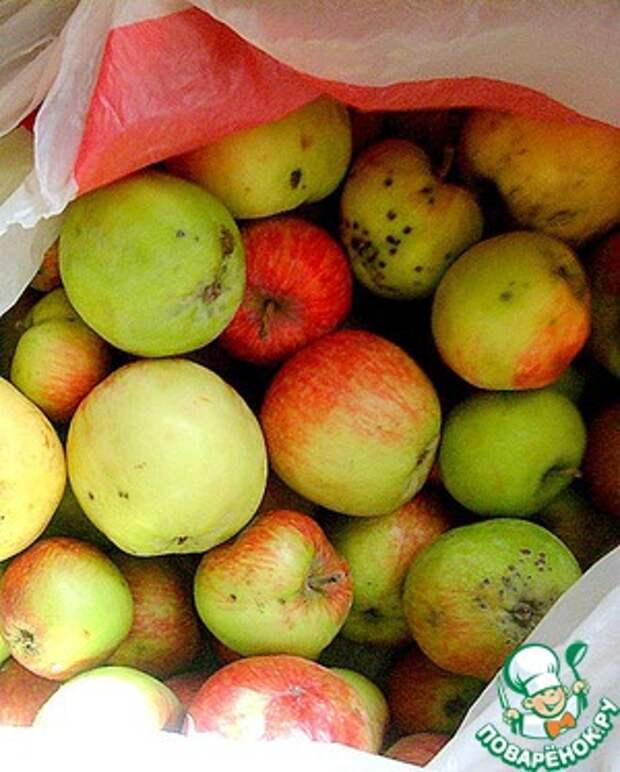Яблочный сидр - семейный рецепт