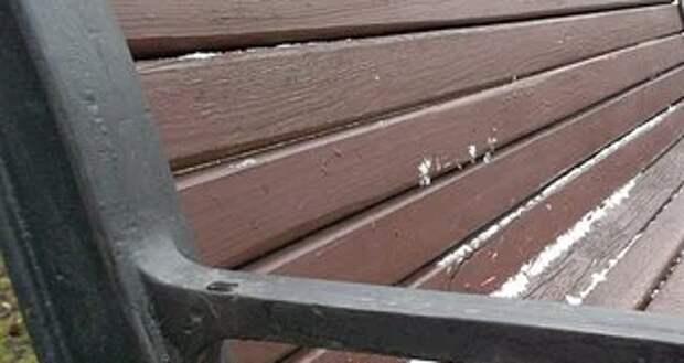 Во дворе дома на Дмитровском шоссе отремонтировали лавочку – «Жилищник»