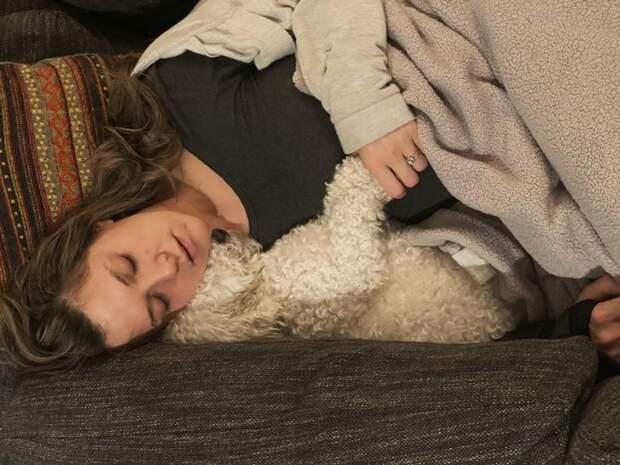 20 настолько влюбленных в своих питомцев людей, что с радостью служат им подушкой и одеялом