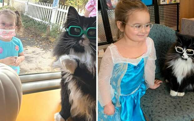 Кошка начала носить очки, чтобы помочь детям с плохим зрением