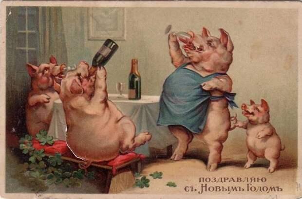 Дореволюционные новогодние открытки с поросятами