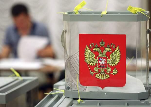 Эксперты проанализировали сообщения о нарушениях в ходе прошедших выборов