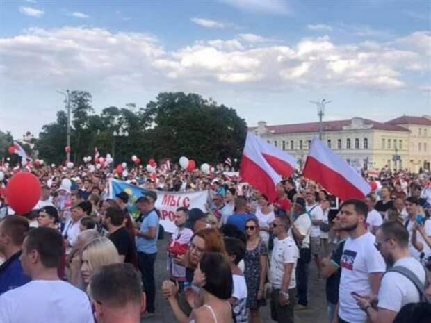 Польские «Чёрные пауки» против Белоруссии