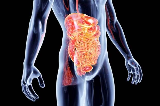 как вывести токсины из организма
