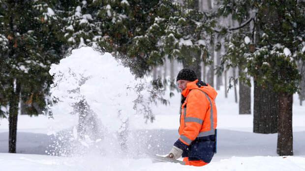 Россиянам предрекли холодную зиму с сильными морозами