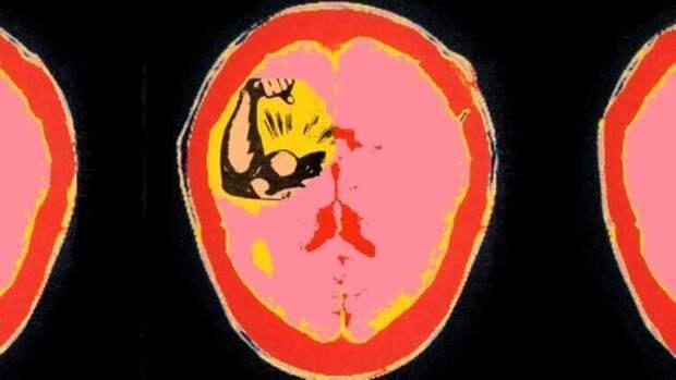 Как власть влияет на мозг?