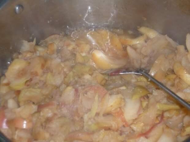 P1140474 500x375 Мармелад яблочный пластовой    Gurmel