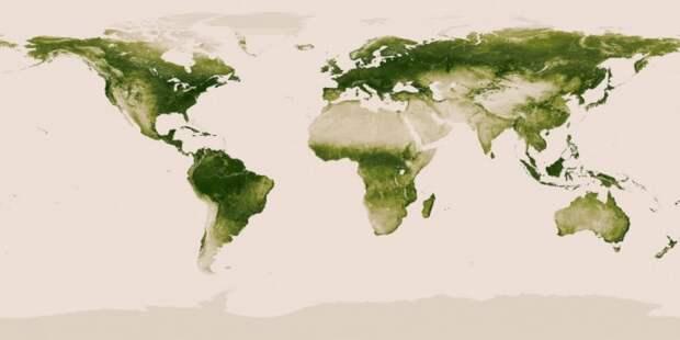 Интересная информация о странах мира