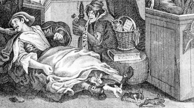 Карикатура на Мэри Тофт, «мать кроликов». <br>