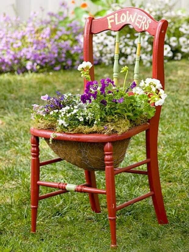 6 основных правил для начинающего садовода