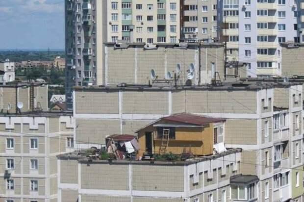 Киевлянин построил на крыше многоэтажки себе дачу с огородиком, а через 10 лет ему выписали штраф