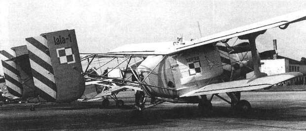 Lala-1.jpg