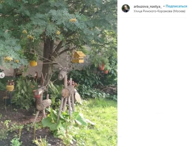Фото дня: на Римского-Корсакова появился «веселый» палисадник