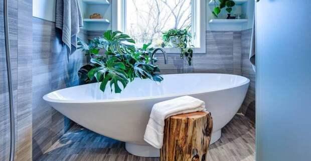 Монстера - сделает вашу ванную комнату особенно привлекательной. / Фото: domnomore.com.