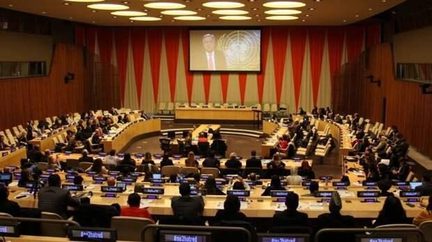 Представители ООН высказались о внесении 12-летней Савенковой в базу «Миротворца»