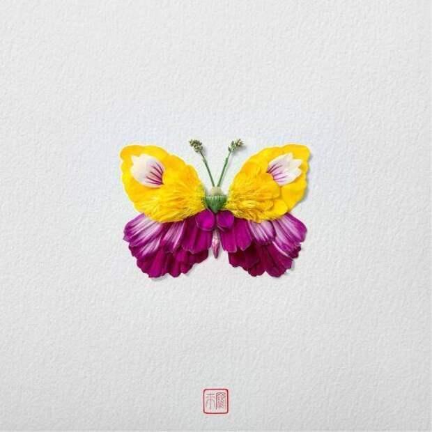 Цветочные бабочки от художника Раку Иноуэ