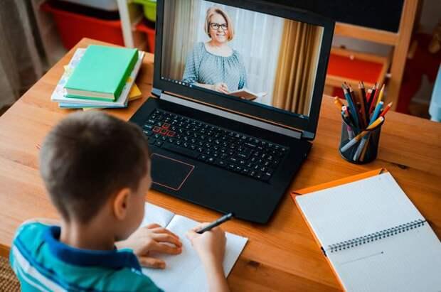 Удалённые дети. Продолжат ли учащиеся дистанционное обучение осенью? |  Образование | Общество | Аргументы и Факты