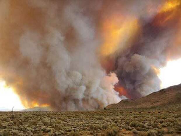 Американцы засняли на видео огненный смерч в Калифорнии - Cursorinfo: главные новости Израиля