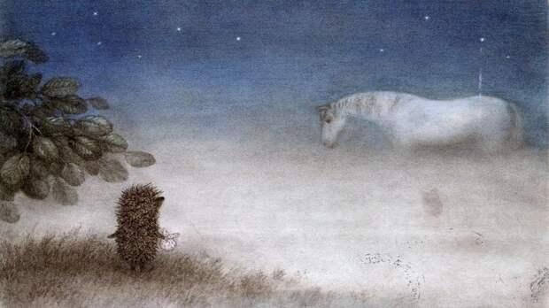 Картинки по запросу ежик в тумане