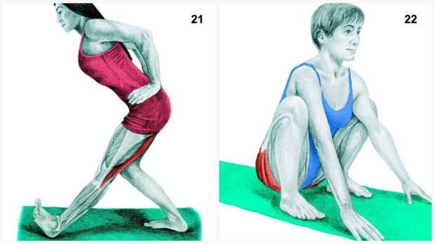БЫТЬ В ФОРМЕ. Что вы тянете на самом деле: растяжка мышц в картинках