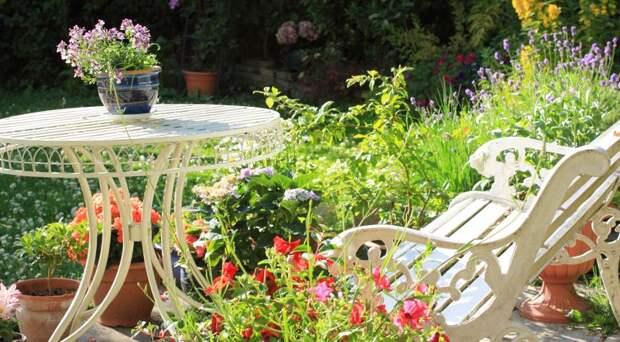Скамейки в саду: коллекция идей