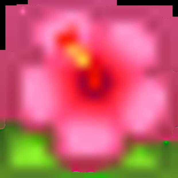 Рододендрон - секреты выращивания.