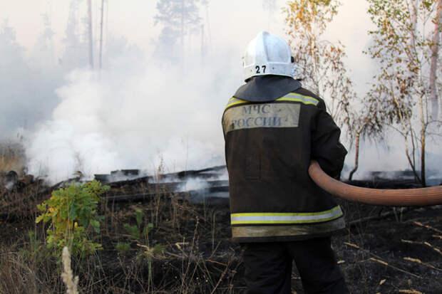 Жилые дома загорелись под Воронежем