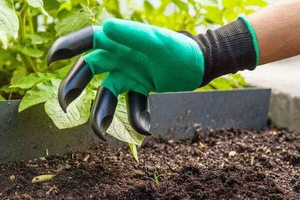 Необычные перчатки, которые здорово помогут в саду и огороде