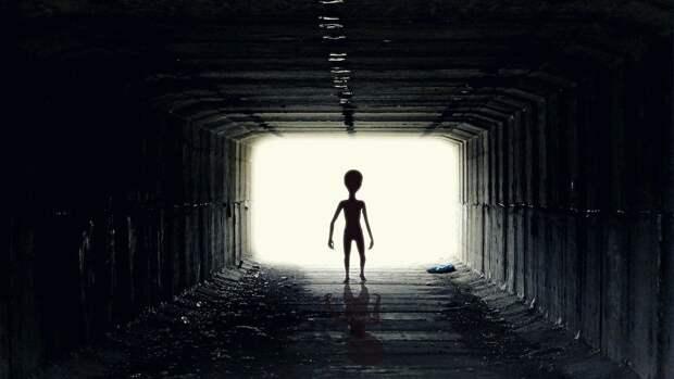 Захарова посоветовала США заняться пришельцами, а не «русской угрозой»