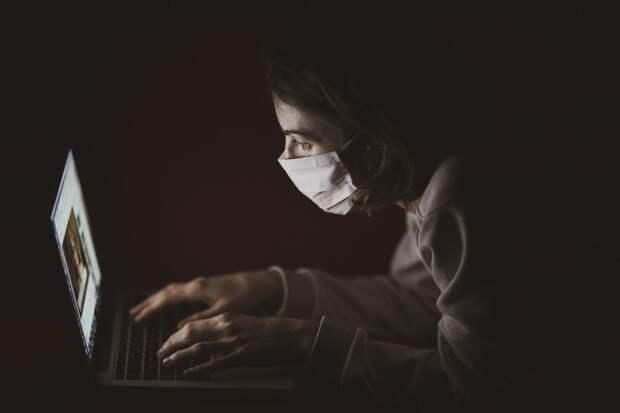 Freedom House: коронавирус снижает  уровень свободы в интернете
