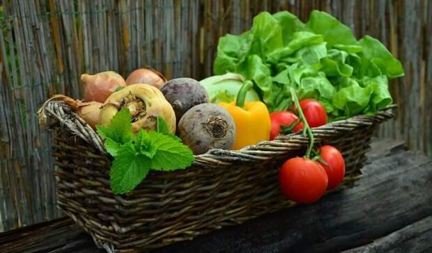 Сезонному взлету цен на овощи прогнозируют снижение