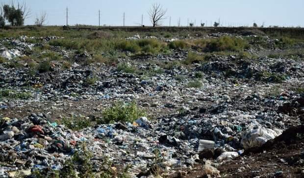Семь нелегальных свалок расчистят на юге Волгограда
