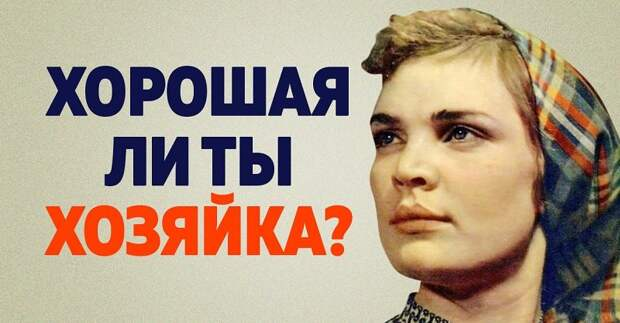 Проверка женщины на хозяйственность по тесту из советского журнала