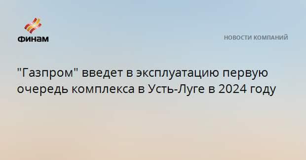 """""""Газпром"""" введет в эксплуатацию первую очередь комплекса в Усть-Луге в 2024 году"""