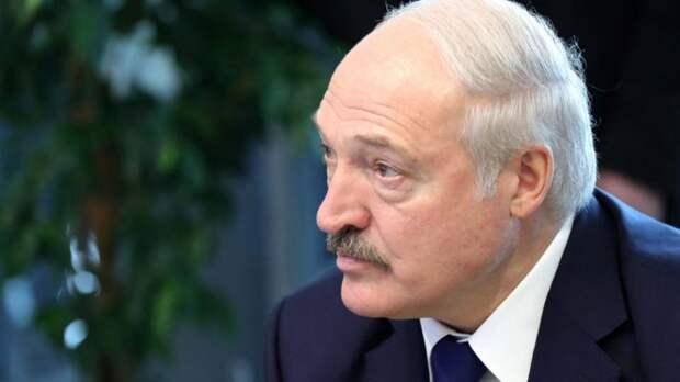 Витязева сразила Сеть анекдотом про «проделки» Лукашенко в берлинском аэропорту